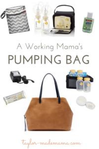 Working Mama's Pumping Bag (1)